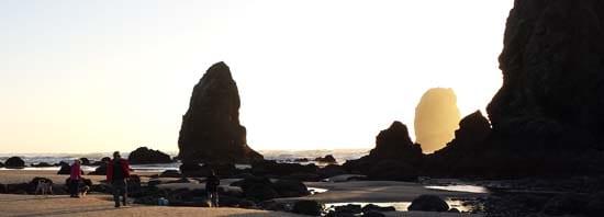 Feb_beach