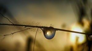 water-drop-409033_640