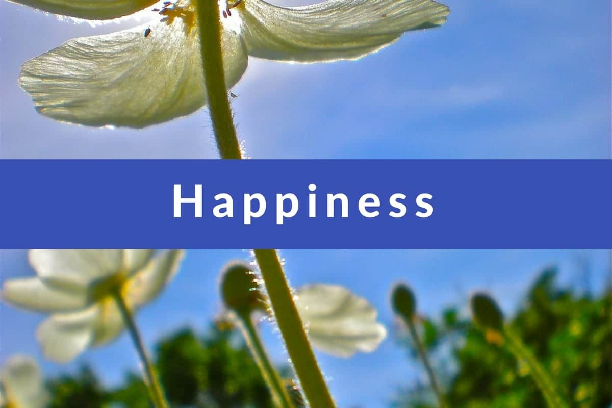 Affirmations for Un Happiness by Cheryl Marlene