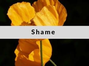 Best Affirmations for Releasing Shame by Cheryl Marlene