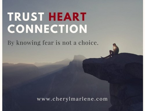 Trust Heart Connection