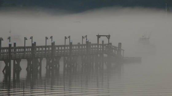 A Cold Fog by Cheryl Marlene.