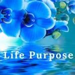 Life Purpose by Cheryl Marlene