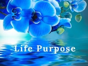 Life Purpose by Cheryl Marlene