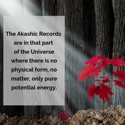 The Pure Potential Energy of the Akashic Records by Cheryl Marlene
