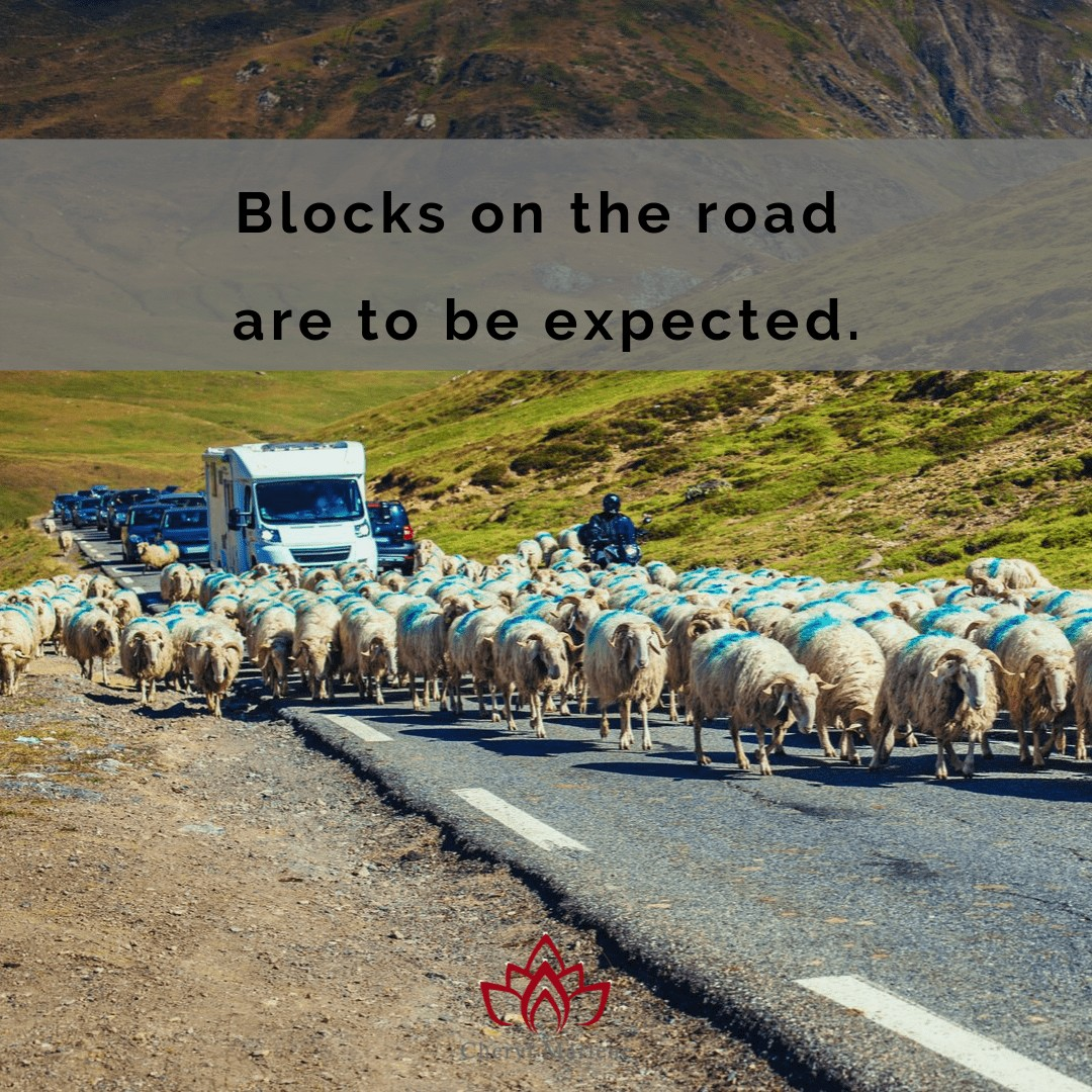 Road Blocks and the Akashic Records by Cheryl Marlene