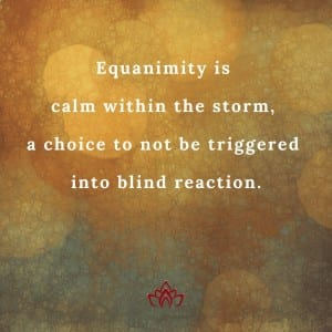 Equanimity and the Akashic Records by Cheryl Marlene