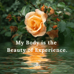 My Body is the Beauty of Experience by Cheryl Marlene