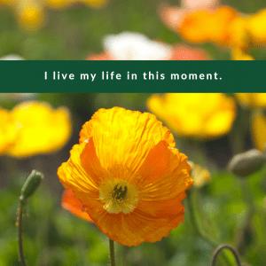 Affirmation #4 for Regret by Cheryl Marlene
