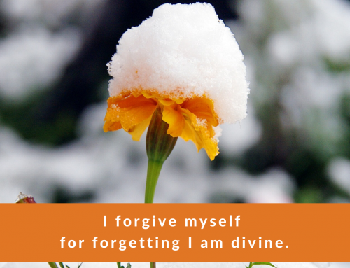 Affirmation of the Week #24