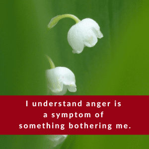 Affirmation #2 of Anger by Cheryl Marlene