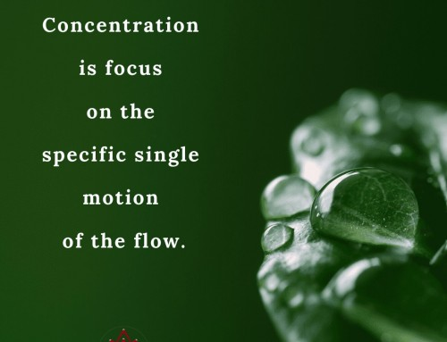 Focus to Concentration