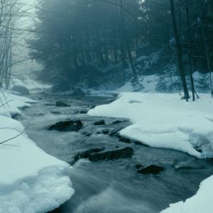 Step Into the River by Cheryl Marlene
