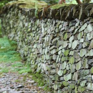 Push of Wall Hitting by Cheryl Marlene