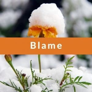 Best Affirmations for Blame by Cheryl Marlene