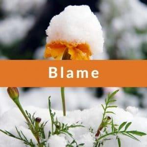 Best Affirmations for Blame by Cheryl Marlene