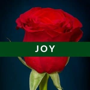 Best Affirmations for Joy by Cheryl Marlene