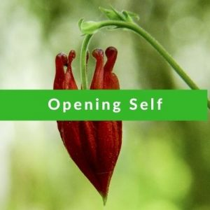 Best Affirmations for Opening Self by Cheryl Marlene