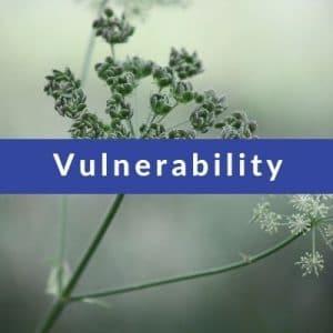 Best Affirmations for Vulnerability by Cheryl Marlene
